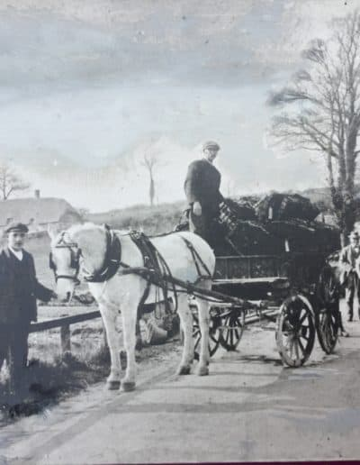 Horse and cart loaded with baskets of cress at the bottom of knapp hill.